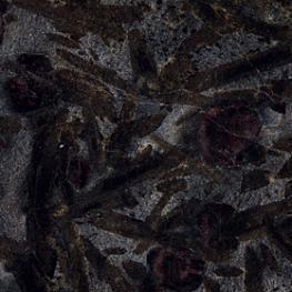 Meteorus, vilgukilt